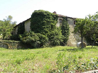 Image 5 | 6 bedroom farmhouse for sale with 82 hectares of land, Langa, Cuneo, Piedmont 168519