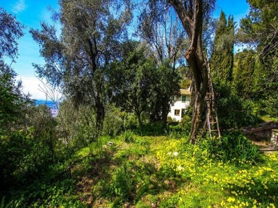 Image 6 | 7 bedroom villa for sale with 1.1 hectares of land, Villefranche sur Mer, Villefranche, French Riviera 169330