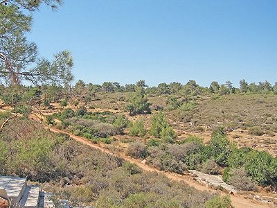 Plot of land for sale, Zanatzia, Limassol