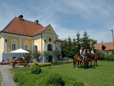 Wine Chateau for sale in Hungary.