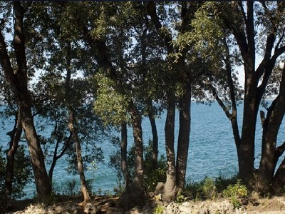 Image 8 | 10 bedroom villa for sale with 0.25 hectares of land, Argentario, Grosseto, Tuscany 170539