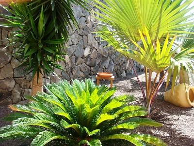 Image 8   4 bedroom villa for sale with 890m2 of land, La Caleta, Southern Tenerife, Tenerife 171223
