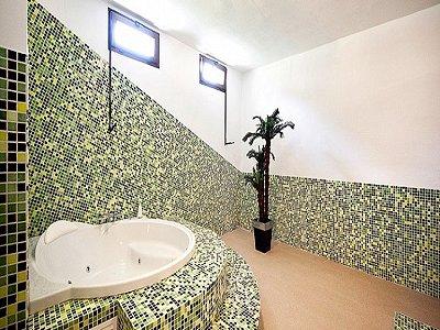Image 15   5 bedroom villa for sale with 9,000m2 of land, Santa Maria del Cami, Central Mallorca, Mallorca 171663