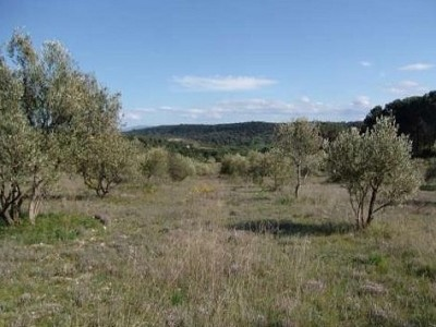 Image 5   11 bedroom French chateau for sale with 107 hectares of land, Carcassonne, Aude , Languedoc-Roussillon 172379