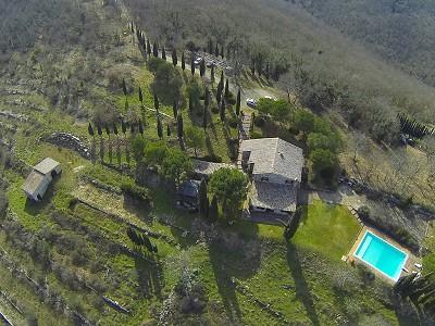Image 9   5 bedroom farmhouse for sale with 33 hectares of land, Podere Campanile, Radda in Chianti, Siena, Chianti Wine Region 172438