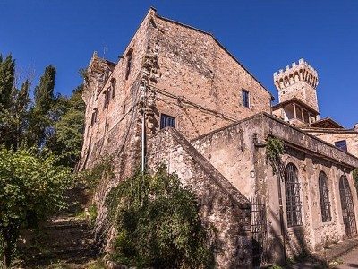 Image 14 | Luxury Castle for Sale with Vineyard in Tuscany 172662