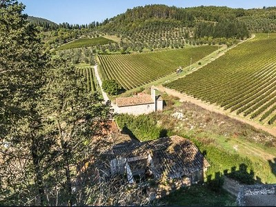 Image 18 | Luxury Castle for Sale with Vineyard in Tuscany 172662