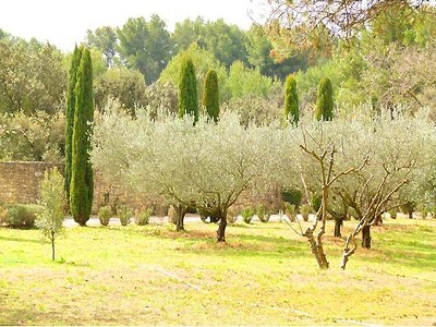 Image 7 | 4 bedroom villa for sale with 4 hectares of land, Grans, Bouches-du-Rhone , Provence 172708