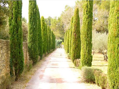 Image 9 | 4 bedroom villa for sale with 4 hectares of land, Grans, Bouches-du-Rhone , Provence 172708