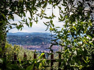Image 6 | 5 bedroom villa for sale, Florence, Chianti 174210