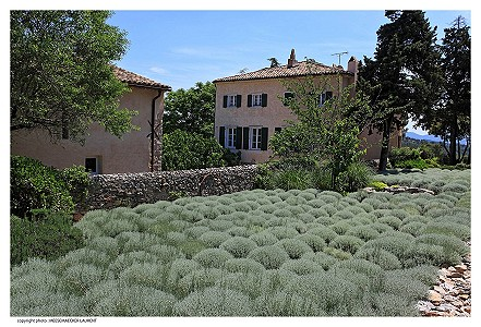 Image 6 | 12 bedroom French chateau for sale with 82 hectares of land, Taradeau, Var , Provence 174324