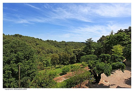 Image 7 | 12 bedroom French chateau for sale with 82 hectares of land, Taradeau, Var , Provence 174324