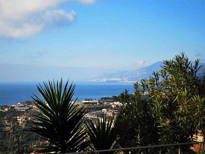 Image 10 | 3 bedroom villa for sale with 1,500m2 of land, Bordighera, Imperia, Liguria 174993