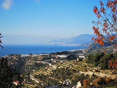 Image 12 | 3 bedroom villa for sale with 1,500m2 of land, Bordighera, Imperia, Liguria 174993