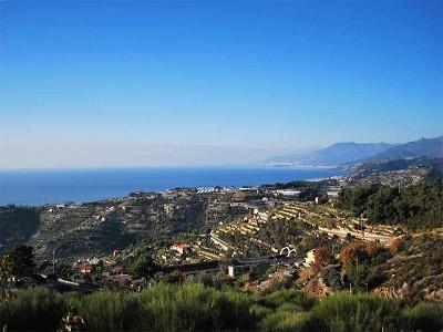 Image 9 | 3 bedroom villa for sale with 1,500m2 of land, Bordighera, Imperia, Liguria 174993