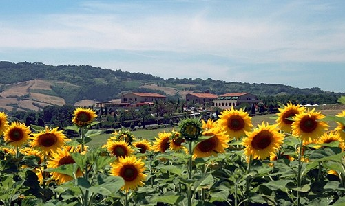 Image 7 | 95 bedroom hotel for sale with 4.07 hectares of land, Campagna Toscana, Pisa, Tuscany 176932