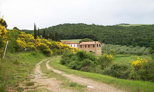 Tuscan farmhouse divided into 6 apartments plus converted barn with 2 apartments
