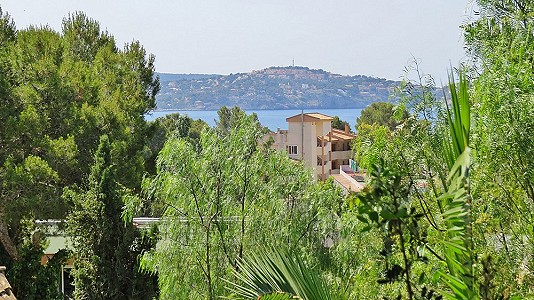 Image 9 | 4 bedroom villa for sale with 2,298m2 of land, Peguera, South Western Mallorca, Mallorca 178836