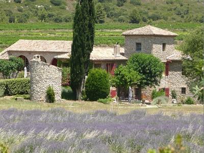 7 bedroom farmhouse for sale, Pelissanne, Bouches-du-Rhone, Provence