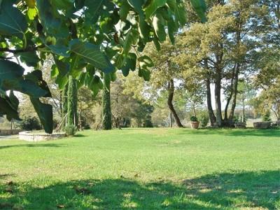 Image 6 | Farmhouse and gite complex in Montegabbione, Umbria for sale with land 179557
