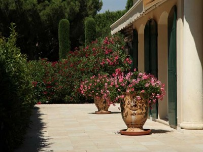 Image 22 | Luxury villa for sale in Saint Tropez with 11 bedrooms 180294