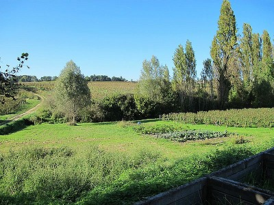 Image 2 | 9 bedroom farmhouse for sale with 7,500m2 of land, Bordeaux, Gironde , Aquitaine 180713