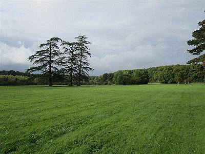 Image 21 | 23 bedroom French chateau for sale with 9 hectares of land, Tours, Indre-et-Loire , Loire Valley 180764