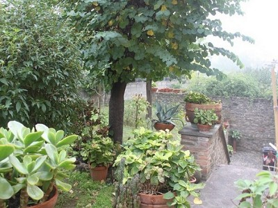 Image 3 | 3 bedroom commercial property for sale, Panicale, Perugia, Umbria 180771