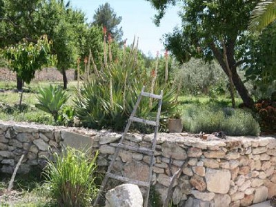 Image 4 | 4 bedroom villa for sale, San Mateo, Santa Eularia des Riu, Ibiza 181278