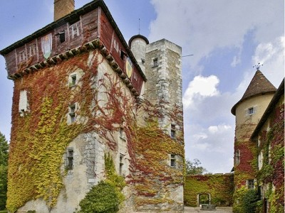 Image 16 | 10 bedroom French chateau for sale with 120 hectares of land, Perigueux, Dordogne , Aquitaine 181797