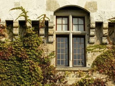 Image 27 | 10 bedroom French chateau for sale with 120 hectares of land, Perigueux, Dordogne , Aquitaine 181797