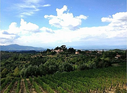 Image 3 | 8 bedroom manor house for sale with 38 hectares of land, Campagna Toscana, Pisa, Tuscany 182866