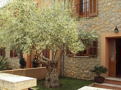 3 bedroom townhouse for sale, Manacor, Mallorca