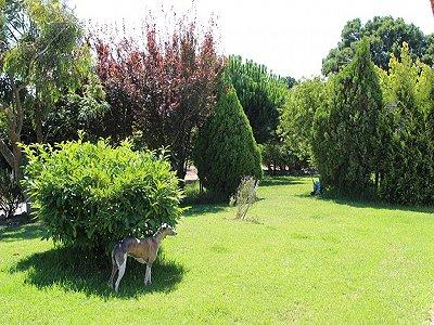 Image 23 | 6 bedroom villa for sale with 1.3 hectares of land, Moita dos Ferreiros, Lisbon District, Costa de Prata Silver Coast 183034