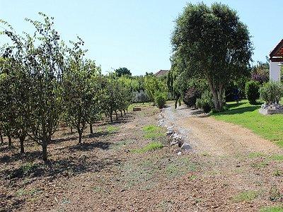 Image 27 | 6 bedroom villa for sale with 1.3 hectares of land, Moita dos Ferreiros, Lisbon District, Costa de Prata Silver Coast 183034