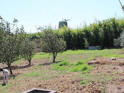 Image 29 | 6 bedroom villa for sale with 1.3 hectares of land, Moita dos Ferreiros, Lisbon District, Costa de Prata Silver Coast 183034