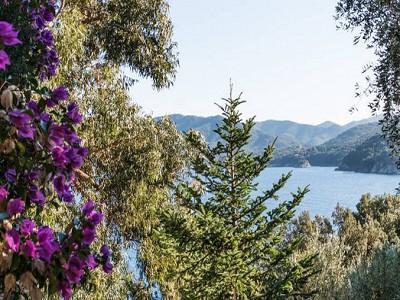 Image 18 | 10 bedroom villa for sale with 1.3 hectares of land, Portoferraio, Elba, Italian Islands 183161