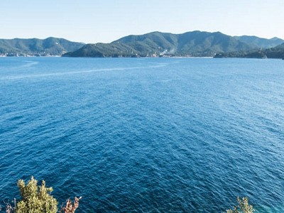 Image 22 | 10 bedroom villa for sale with 1.3 hectares of land, Portoferraio, Elba, Italian Islands 183161