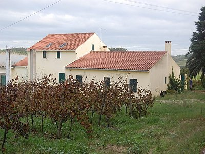 Image 2 | 5 bedroom farmhouse for sale with 2 hectares of land, Obidos, Leiria District, Costa de Prata Silver Coast 183521