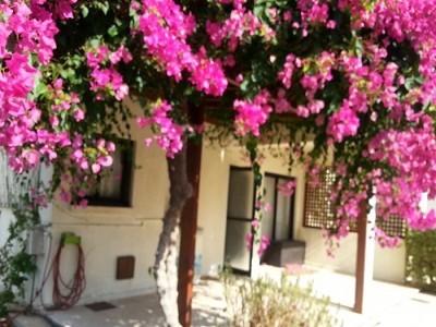2 bedroom house for sale, Prodromi, Paphos