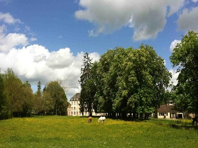Image 12 | 20 bedroom French chateau for sale with 45,000m2 of land, La Vieille Lyre, Eure , Normandy 183982