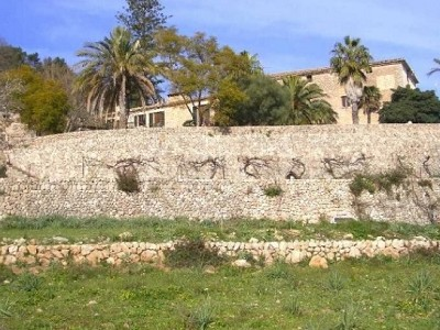 Image 11 | Mallorca villa with Agriturismo business and potential for hotel 184149