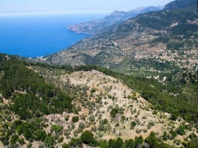 Plot of land for sale, Deia, North Western Mallorca, Mallorca