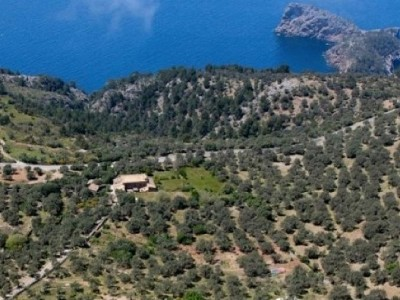 Image 5 | Plot of land for sale with 80 hectares of land, Deia, North Western Mallorca, Mallorca 184153