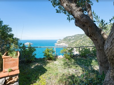 Image 8 | 4 bedroom villa for sale with 0.57 hectares of land, Argentario, Grosseto, Tuscany 185589