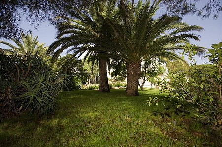 Image 11 | 9 bedroom farmhouse for sale with 0.45 hectares of land, Fuengirola, Malaga Costa del Sol, Andalucia 185596