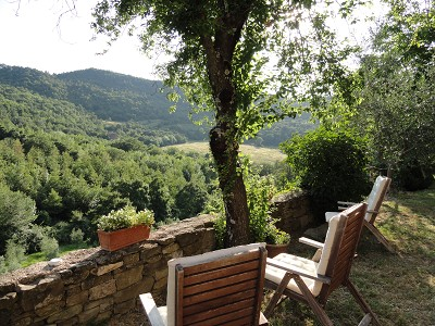 Image 24 | Idyllic Tuscan Farmhouse for Sale near Florence with Income Opportunity  185791