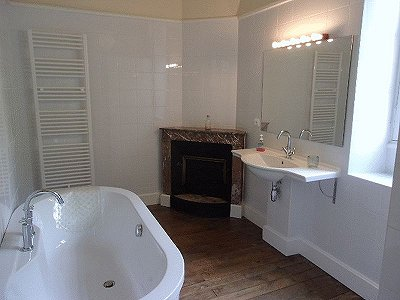 Image 19   10 bedroom house for sale with 1,725m2 of land, Montmorillon, Vienne , Poitou-Charentes 186271