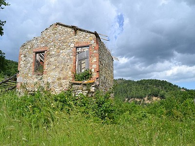 Image 4 | 4 bedroom farmhouse for sale with 4 hectares of land, Allerona, Terni, Umbria 186361