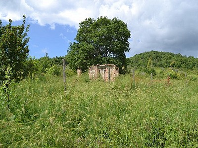 Image 5 | 4 bedroom farmhouse for sale with 4 hectares of land, Allerona, Terni, Umbria 186361